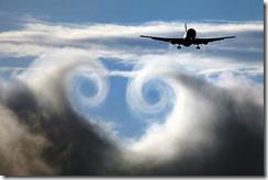zWing vortex