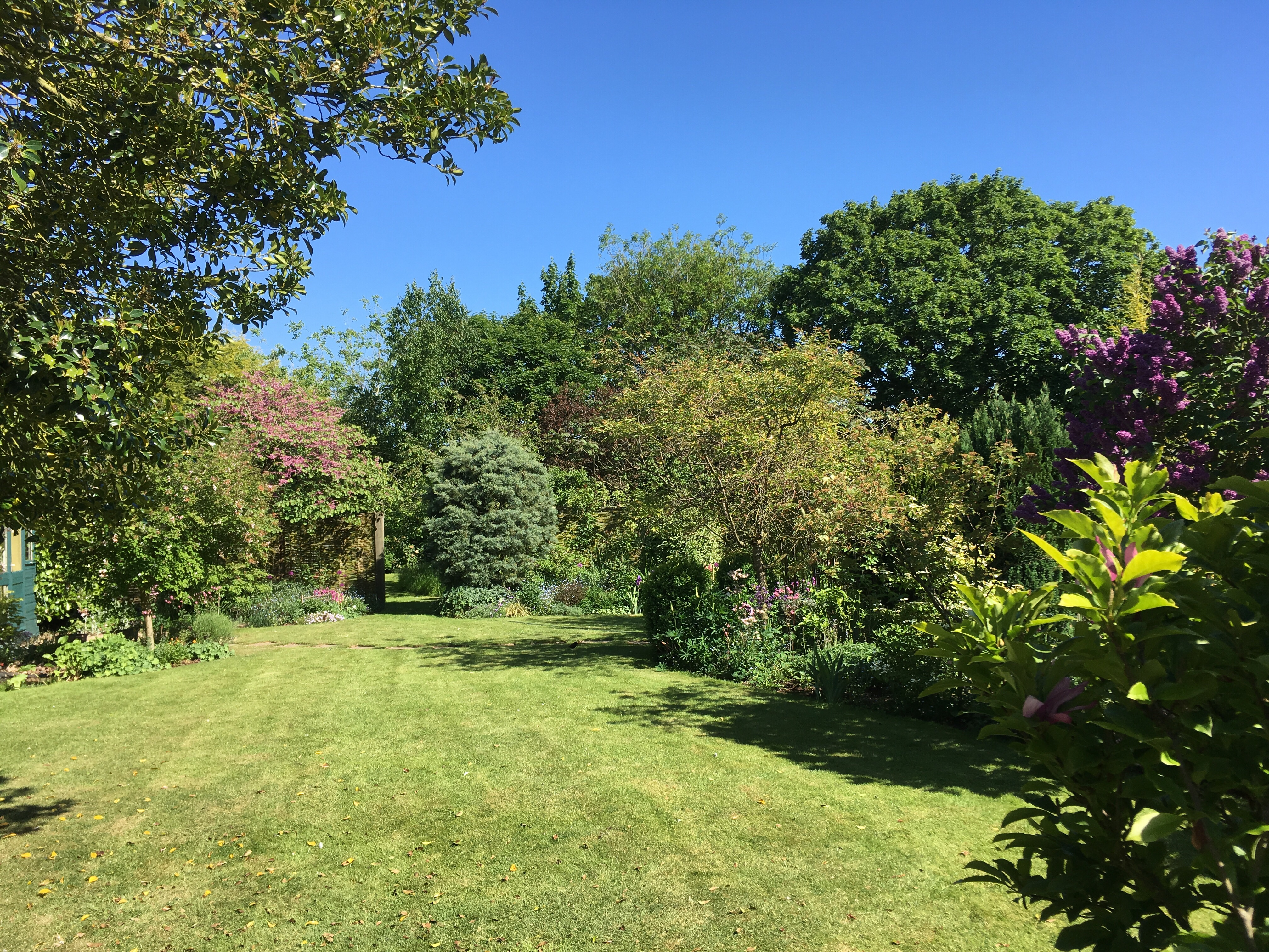 Our Garden At 14 Lynn Road Will Be Open For Charity In The National Gardens  Society (u201cYellow Booku201d) Scheme On Sunday 10th June From 2 6pm, Along With  Four ...